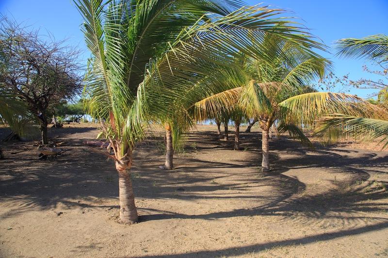 Las salinas nicaragua real estate